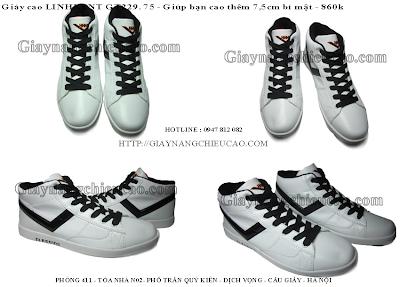 Giày nam Linhkent GT229. 75
