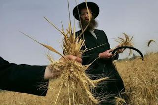 Reut, Israel Farmer