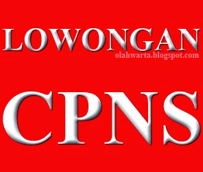 Info Lowongan CPNS