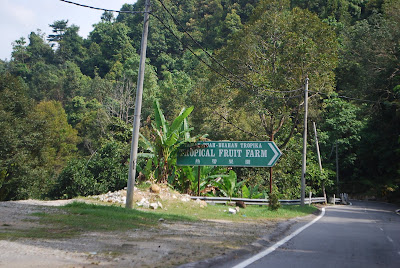 (Malaysia) - Penang - Tropical Fruit Farm