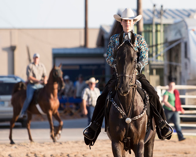 Genie Images, Jeanne Harford, equine photographers, event photographers, San Antonio photographers,horses, horse photography, Texas equine photographers