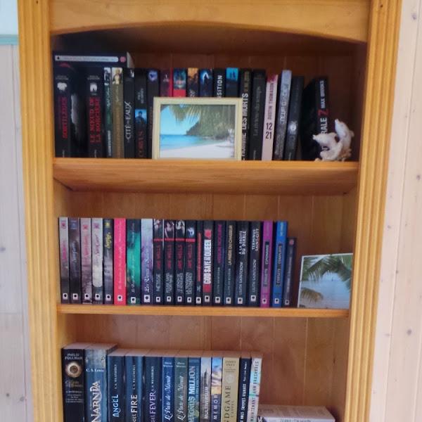 Mes bibliothèques au 31 janvier 2015