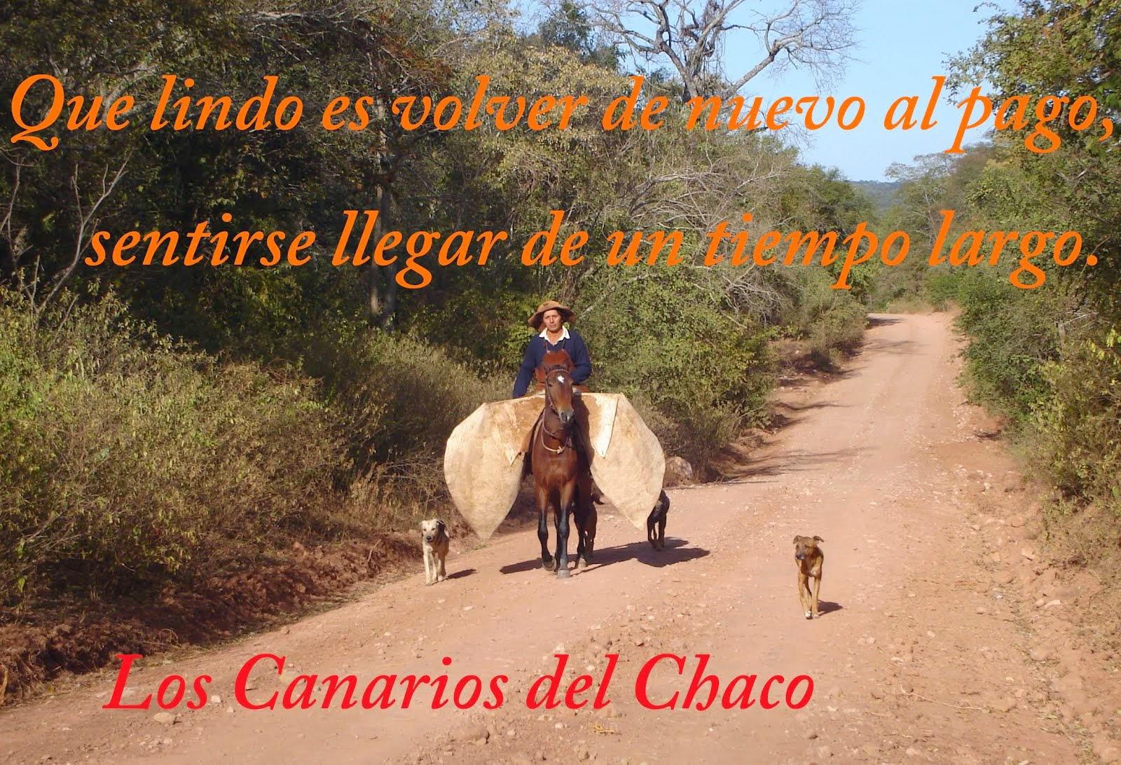 Los Canarios del Chaco Boliviano