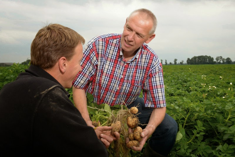 http://www.cropscience.bayer.com/en/Media/Press-Releases/2015/Bayer-CropScience-Farm-Frites-jointly-implement-sustainable-practices-European-potato-cultivation.aspx