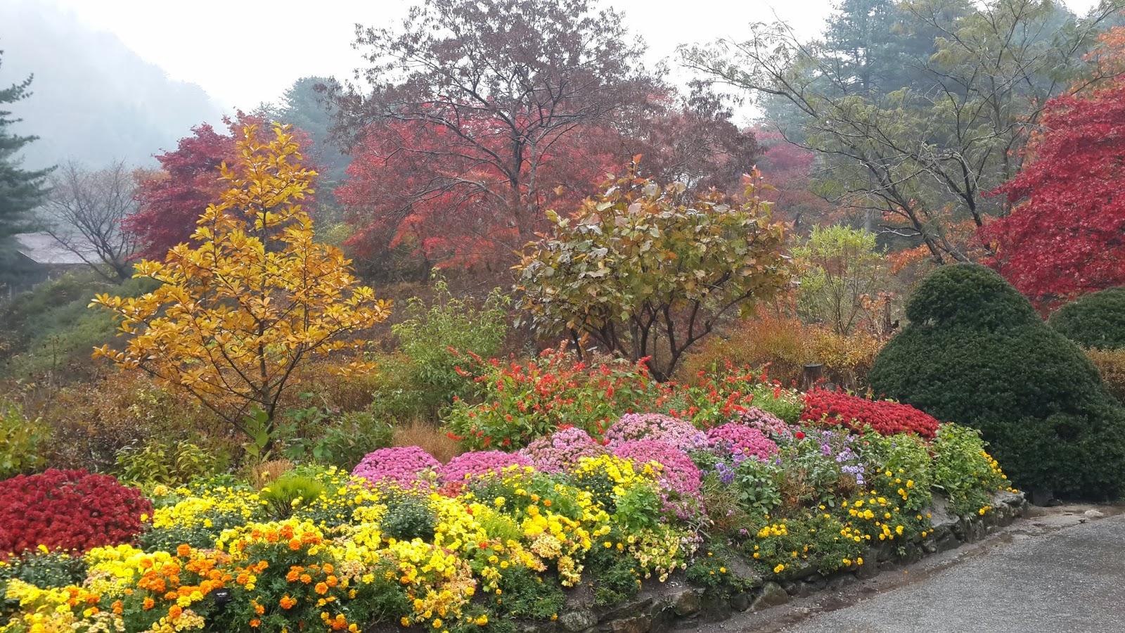 Autumn In Garden Of The Morning Calm Korea