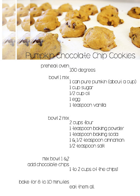 pumkin chocolate chip cookies at aruffledlife.com