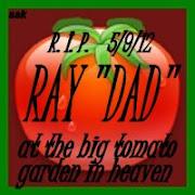 Dad's Tomato Garden
