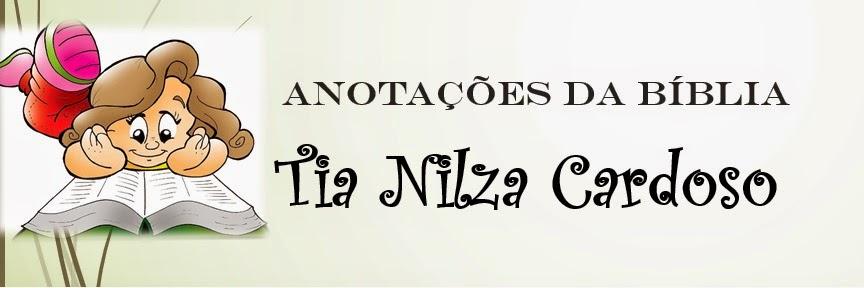 Anotações da Bíblia da Tia Nilza Cardoso