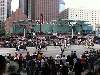 HOUSTON RODEO PARADE HORSES WITH AMERICAN FLAGS