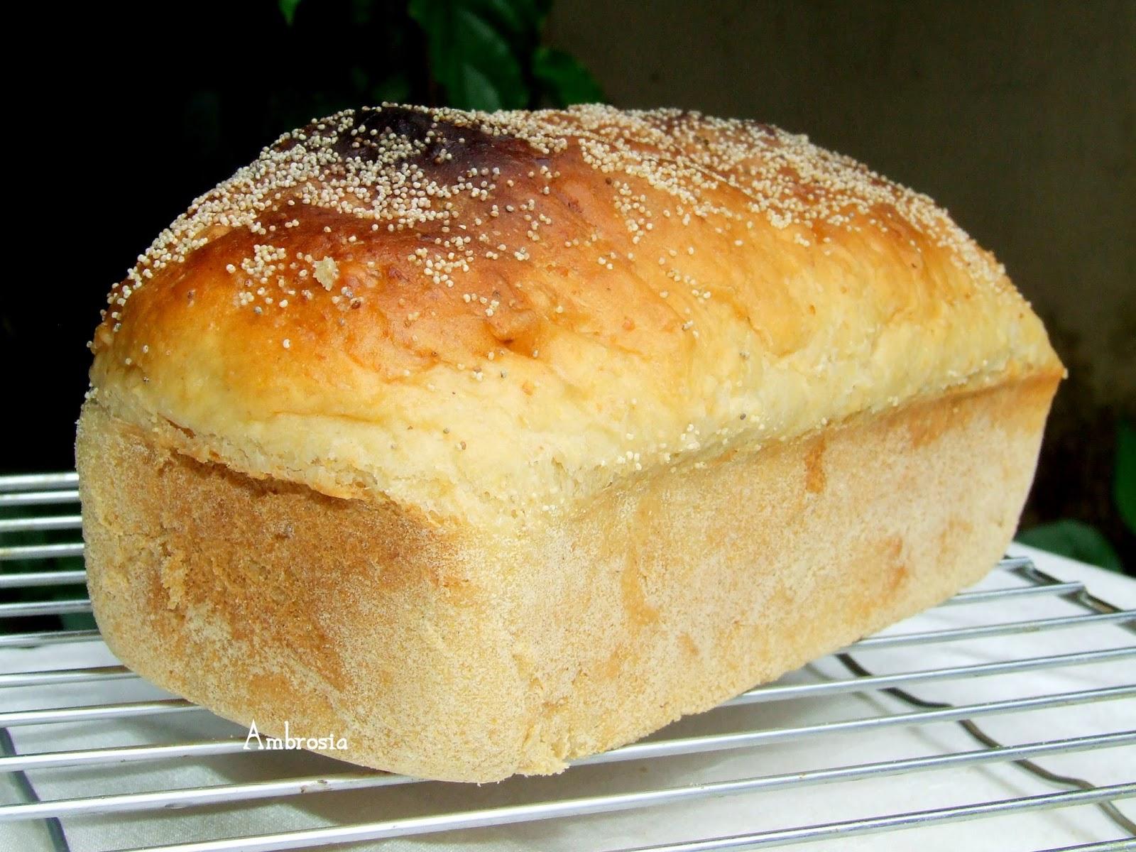 AMBROSIA: Breads