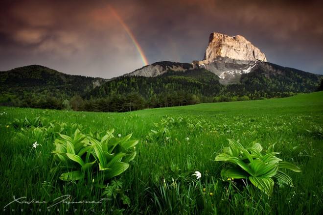 Fotografías de la Naturaleza