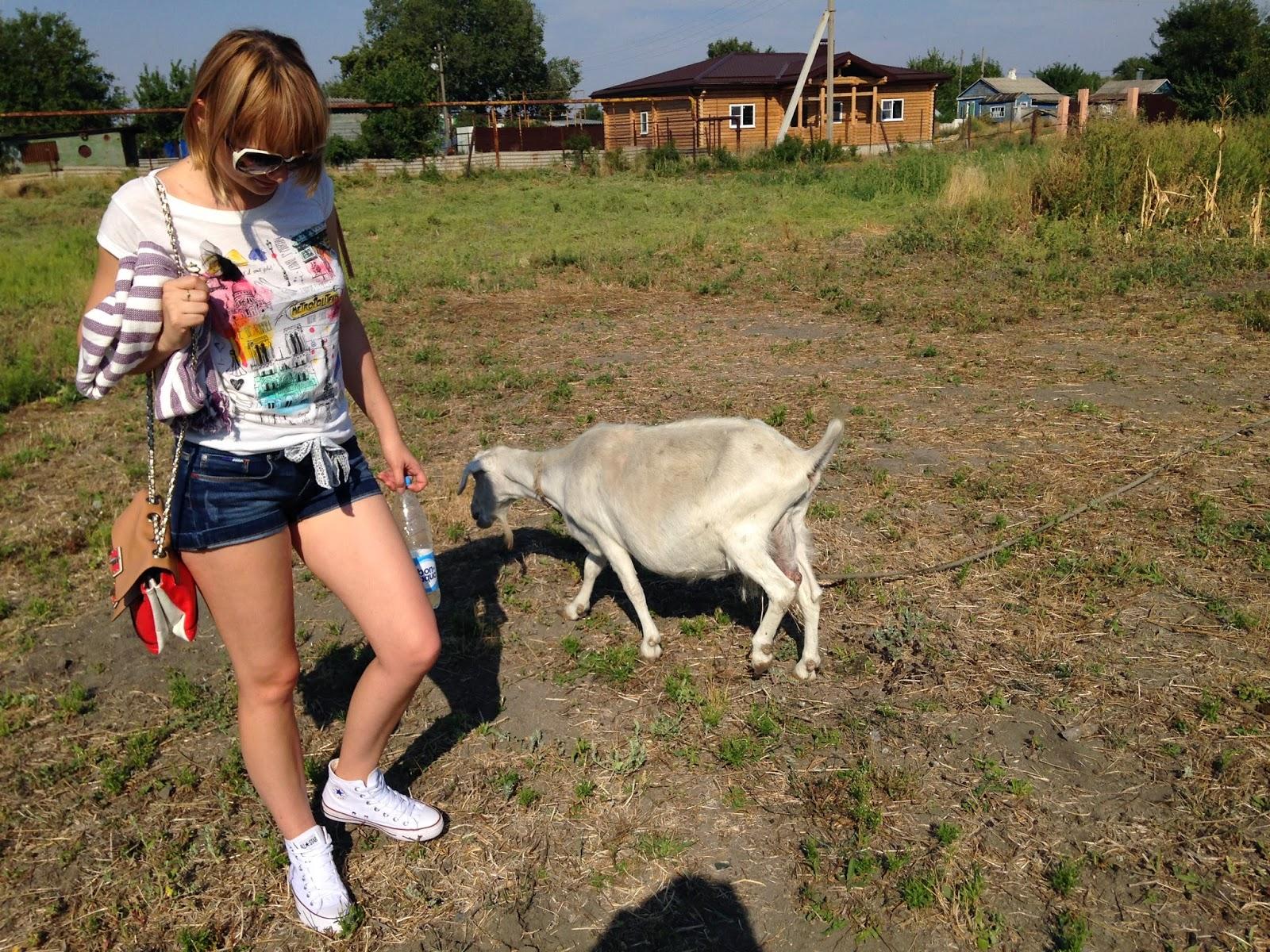Беременная_Коза