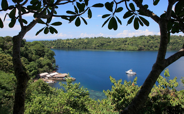 The view of a Tufi fjord from the cliff top - Papua New Guinea
