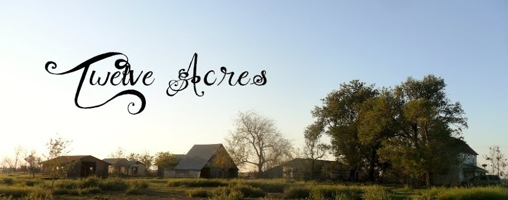 Twelve Acres