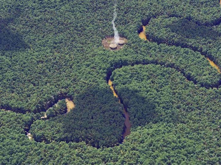 Convivencia armónica con la naturaleza