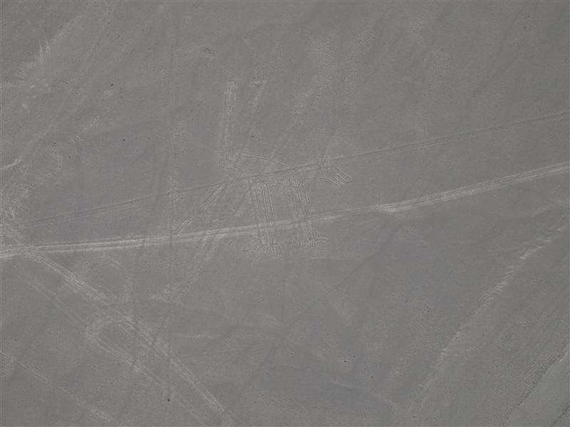 Líneas de Nazca - El perro