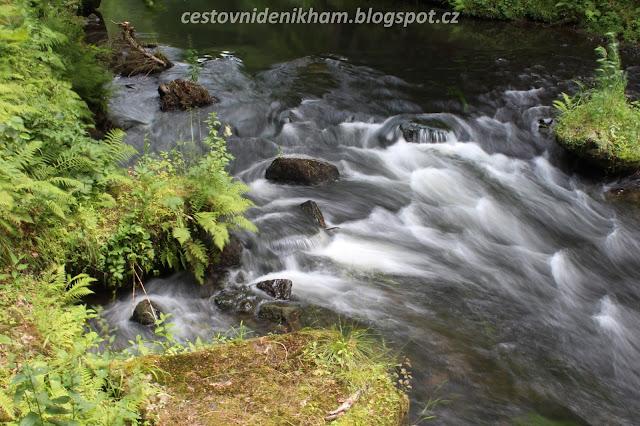 """řeka Kamenice // """"Kamenice"""" river"""