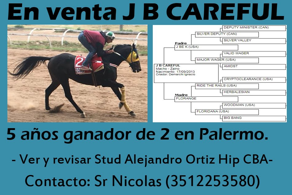 VENTA J B CAREFUL