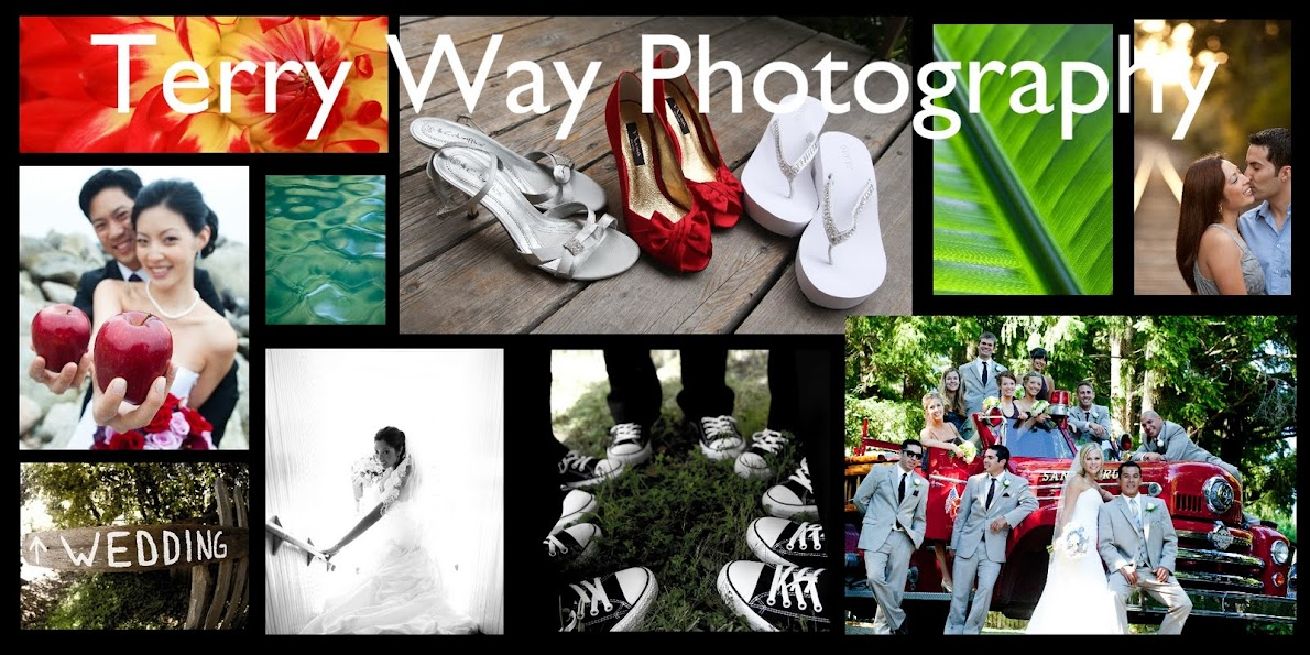 Terry Way Photography Santa Cruz Photographer