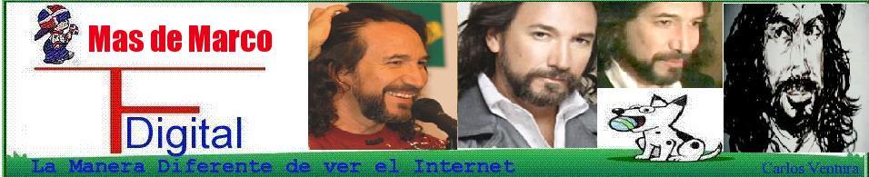 Mas de Marco A. Solis*