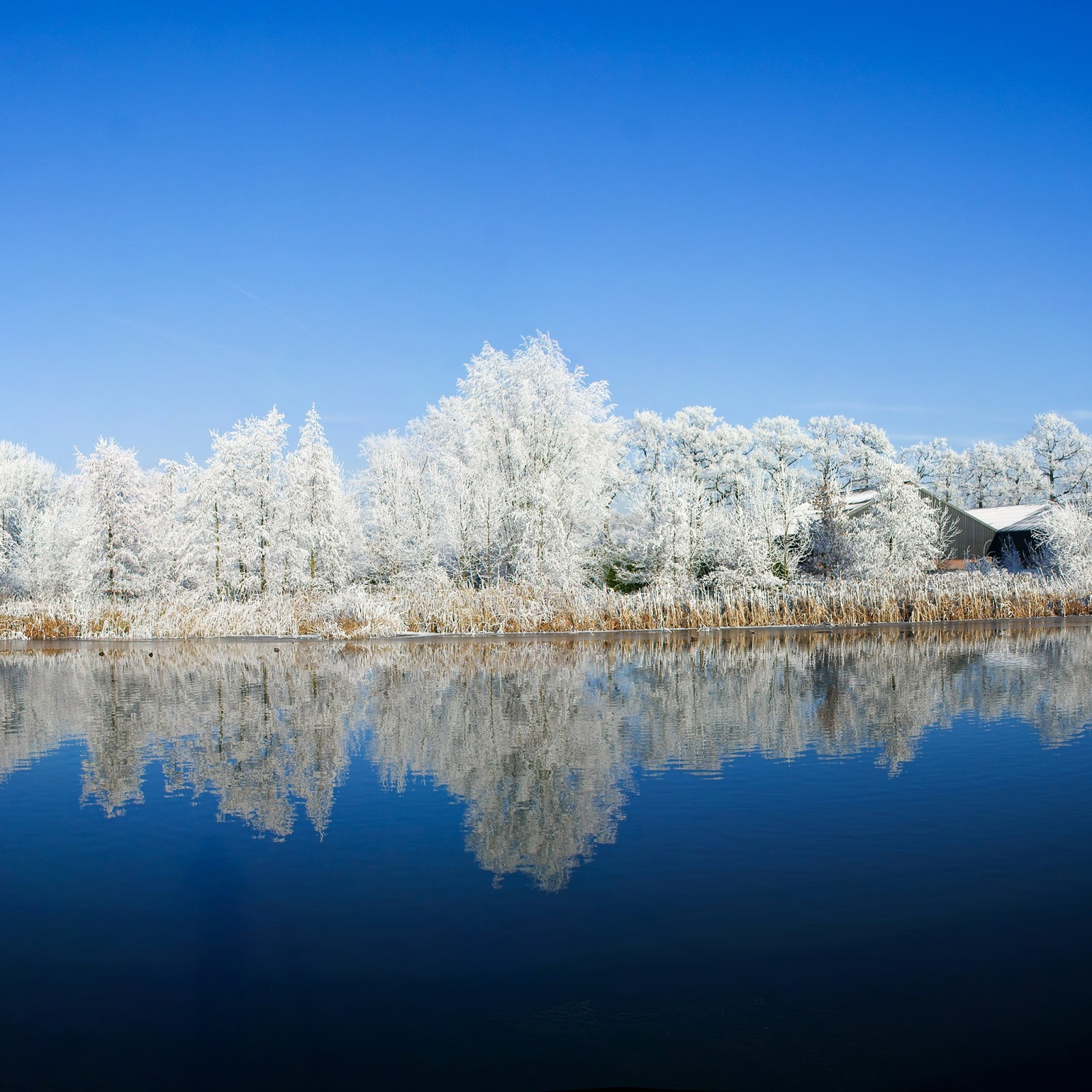 Winter Wallpaper: Winter Themed HD Wallpapers For IPad 4