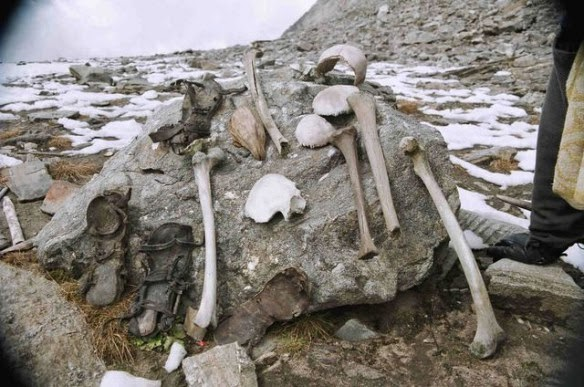 bones at skeleton lake in India