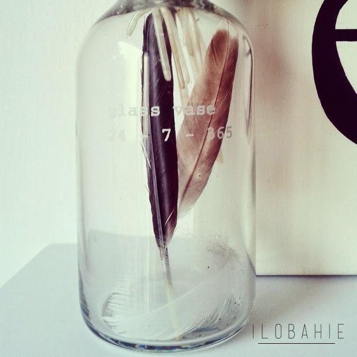 Pióra w szklanej butelce