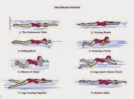 renang gaya dada atau gaya katak