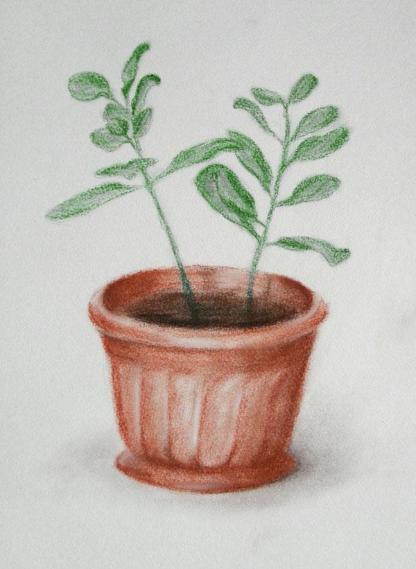 цветок, кофемолка, рисунок, пастель