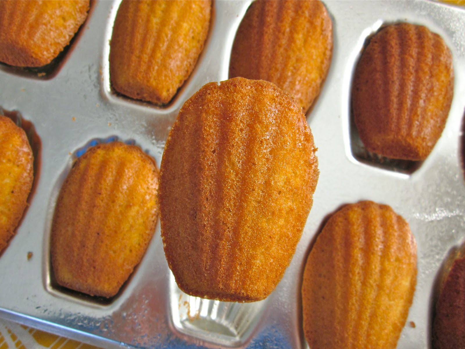 how to make madeleines without a madeleine pan