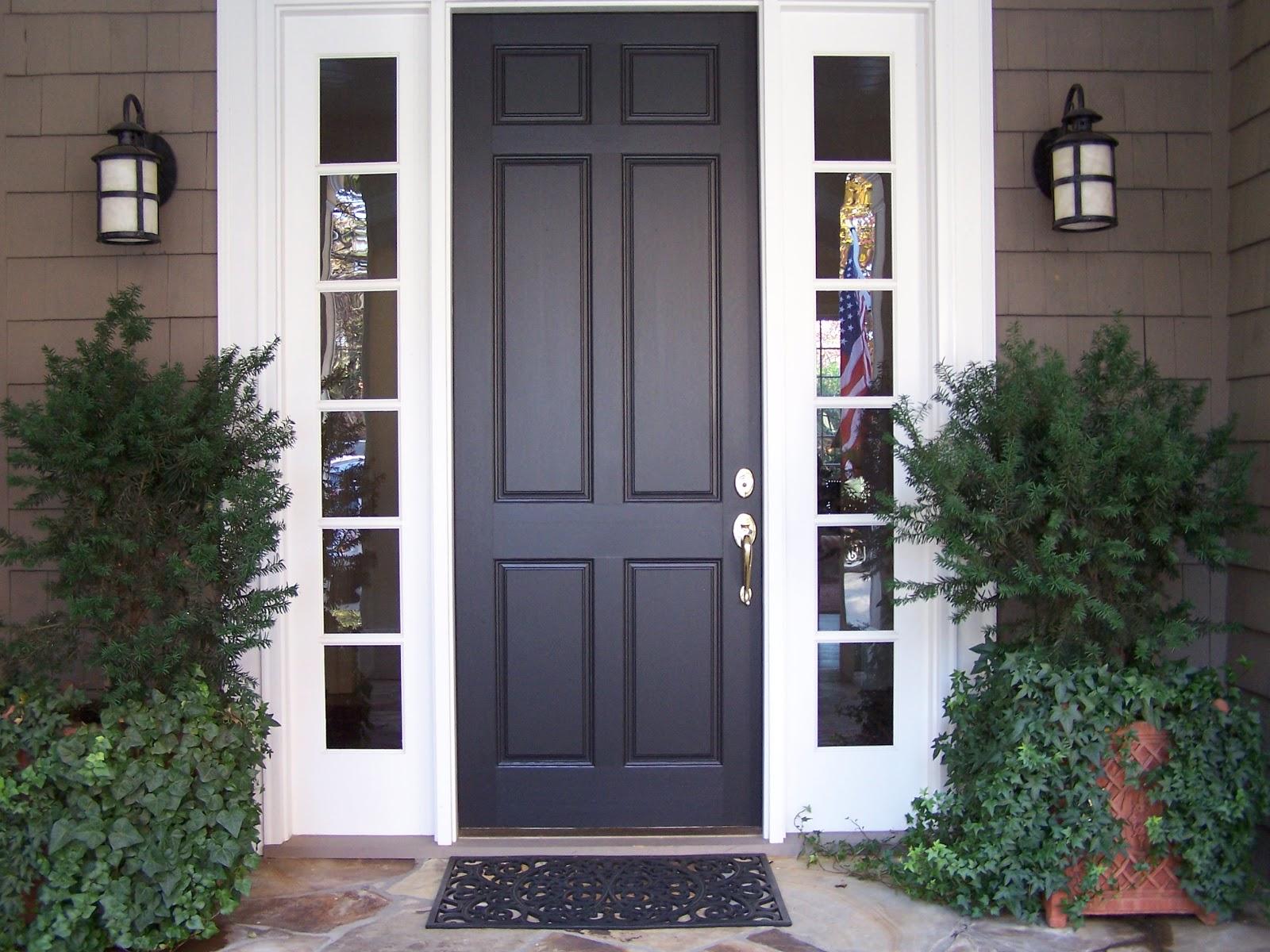 Tara dillard curb appeal color pots lights for Black exterior door with sidelights