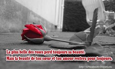 joli sms d'amour