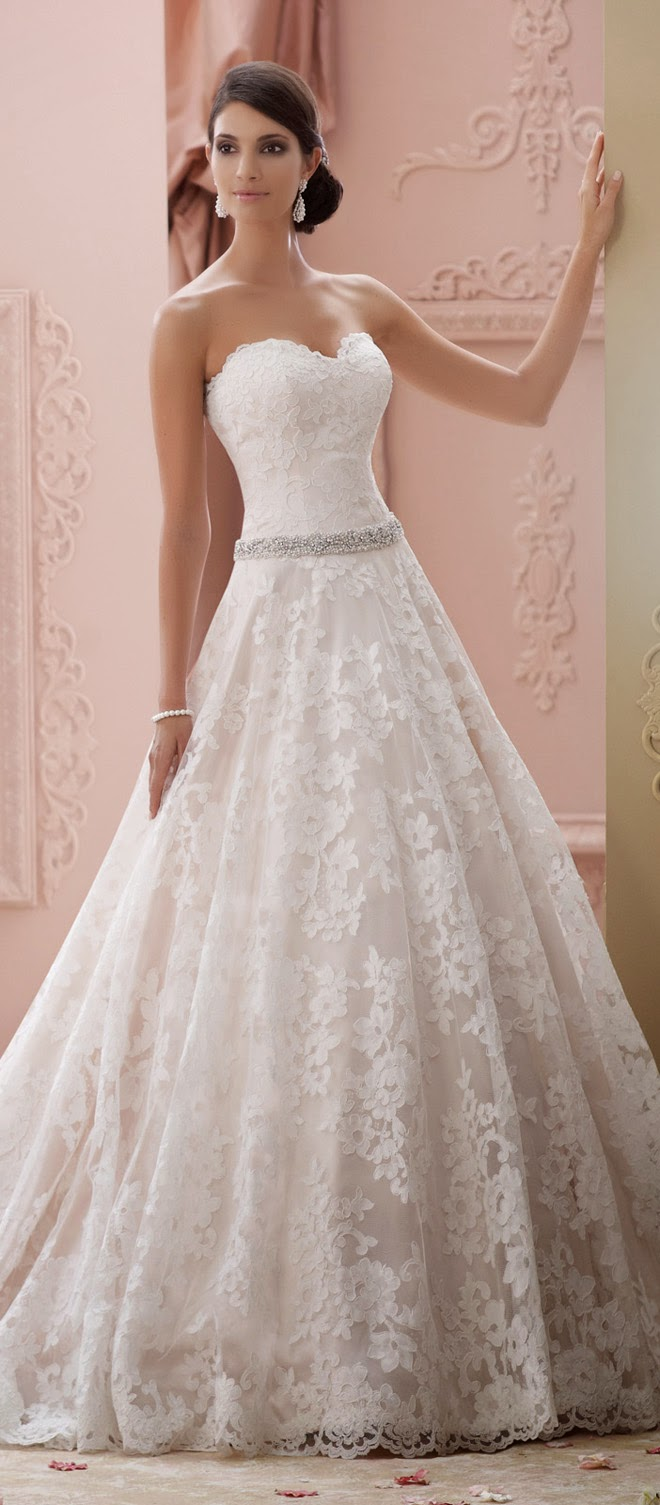 David tutera for mon cheri spring 2015 bridal collection for How to find the perfect wedding dress