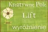 Wyróżnienie: Kreatywne Pole