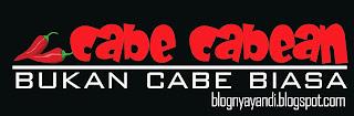 http://blognyayandi.blogspot.com/2013/12/cabe-cabean-bukan-cabe-biasa.html