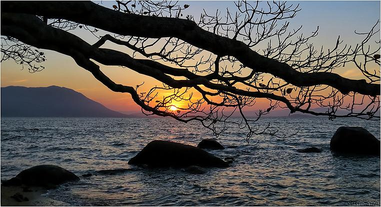 emphoka, photo of the day, Susie Sun, Canon PowerShot SX50 HS
