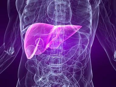 Inilah Bahaya Penyakit Hepatitis B