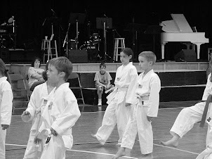 ANIMATION JUDO PARIS