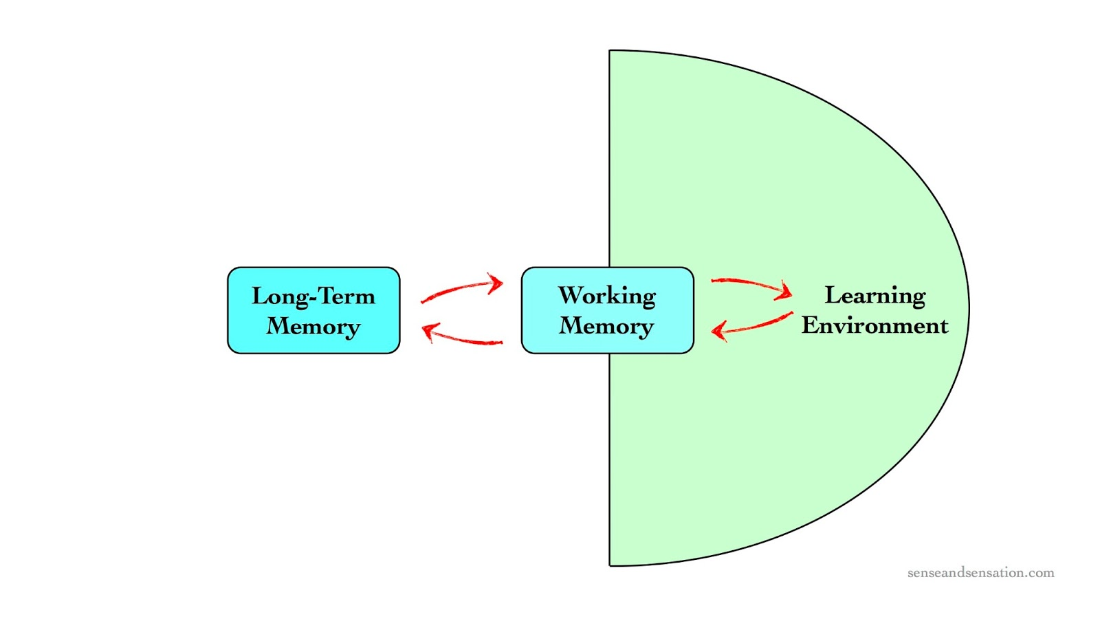 Interlude  Long Term Memory And Working Memory  Part 5 Of