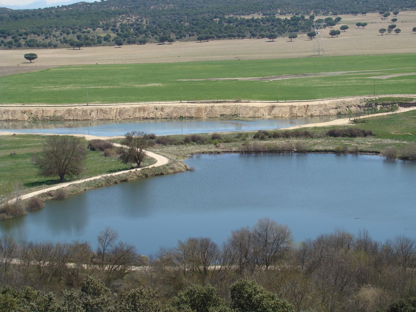 La llanura de lagunas lavajos y charcas for Lagunas artificiales para jardin