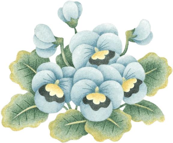 Imagenes de petunias