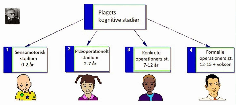 piaget stadier for kognitiv udvikling
