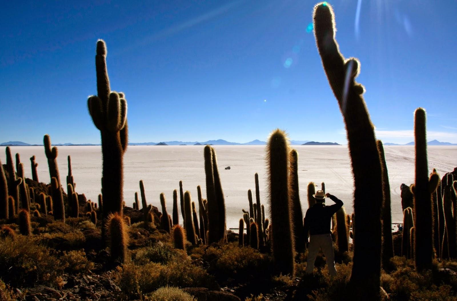 """""""Isla del Pescado"""" en el Salar de Uyuni"""