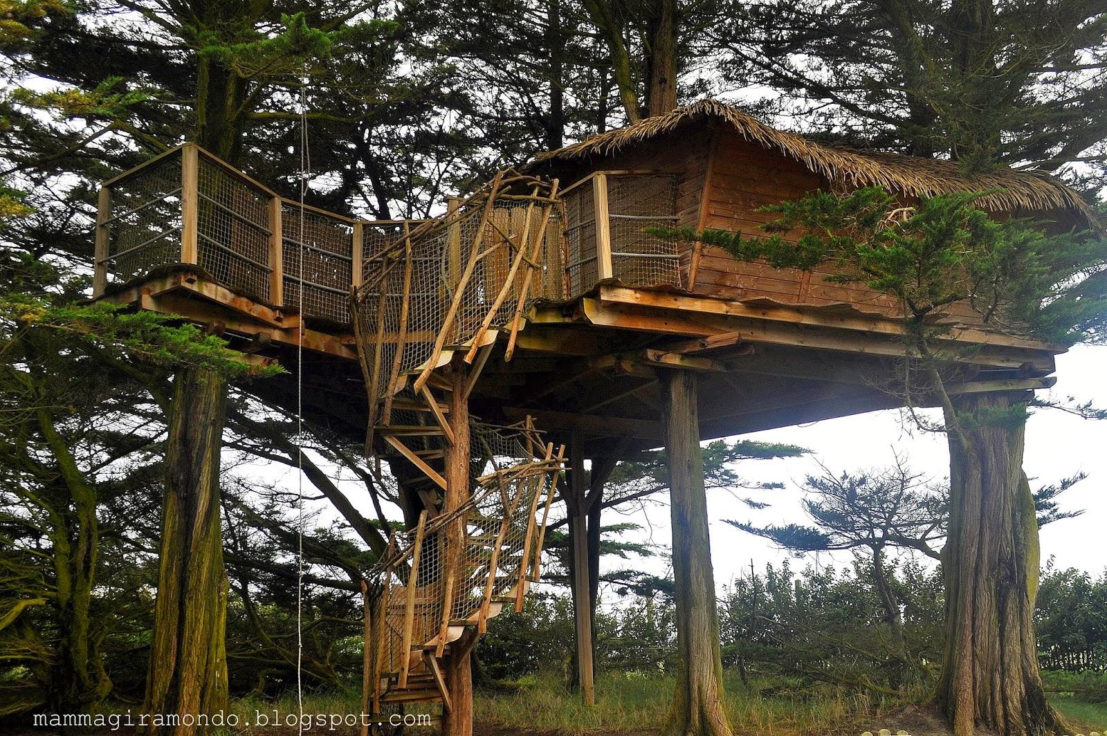 Dormire in una casa sull 39 albero in bretagna - Come costruire una casa sull albero ...