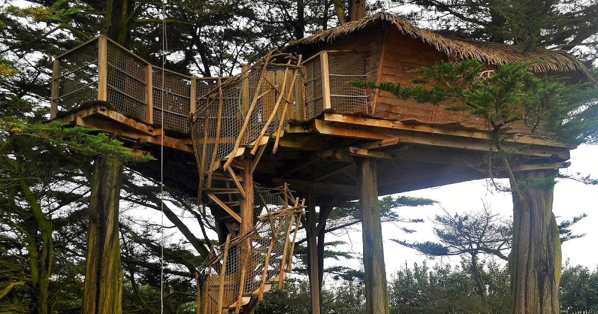 dormire in una casa sull 39 albero in bretagna