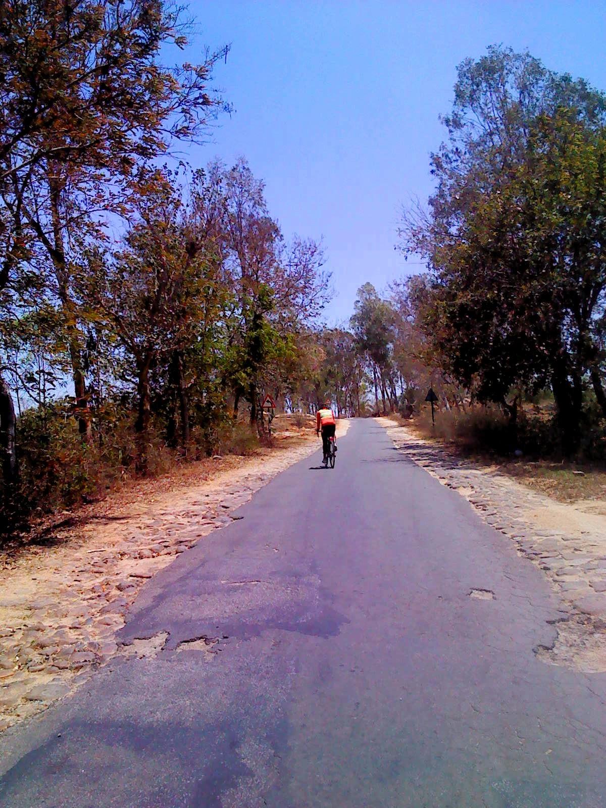 Cyclist on road to Venkatagirikota
