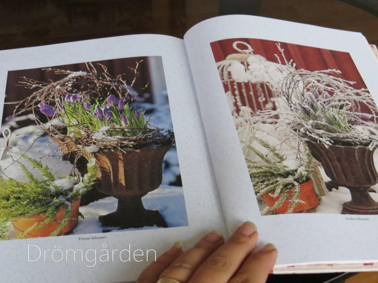 Drömgården: Längtan till våren och lökväxter