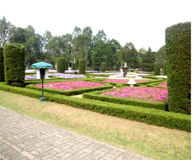 Warna Warni Taman Bunga Nusantara Cipanas