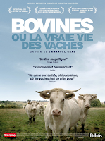 Bovines, a real vida das vacas