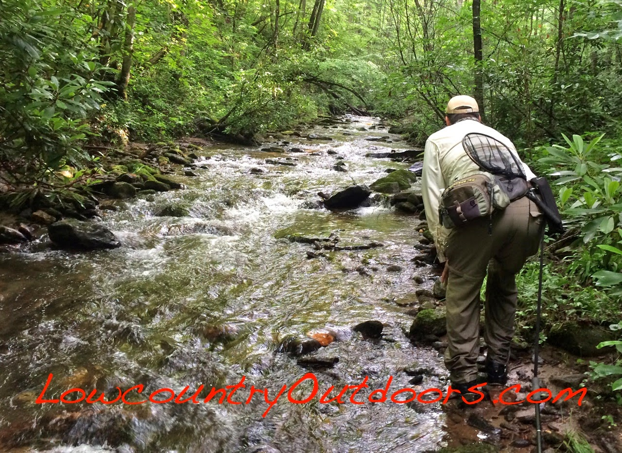 Lowcountry outdoors fly fishing trails and jackson county for Nc fishing license cost